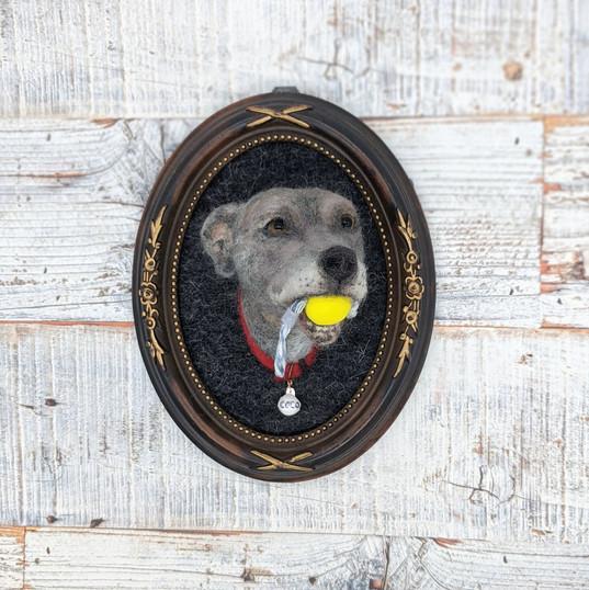 3D portrait of Coco