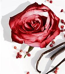 Dark Rose Labdanum.jpg