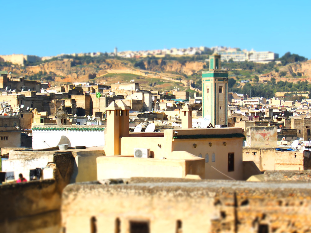 View of the Fez medina