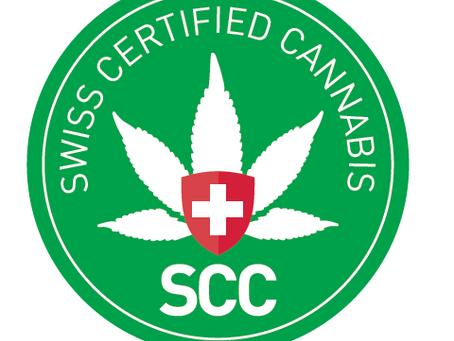 Mitgliederversammlung IG Hanf, Qualitätsmanagement Cannabis Branche