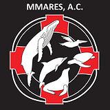LOGO MMARES solo_fin.jpg
