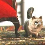 Margot's Cat