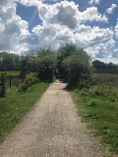 Path - Sue (10).jpg