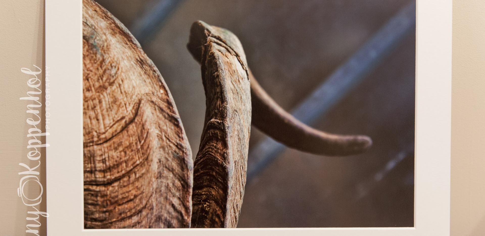 Ram's Horns