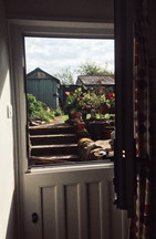 View from my kitchen door - Rebecca.JPG