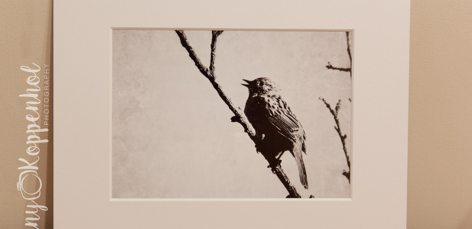 Songbird (Black & White)