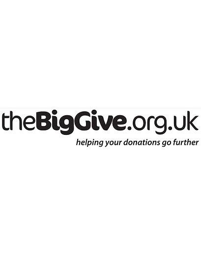 the big give3.jpg