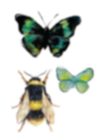 bee and butterflies-01.png