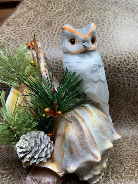 WP White Owl on Conch Shelf Art