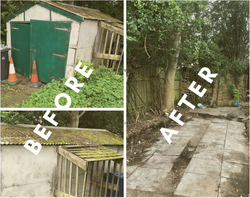 Asbestos Shed Removal