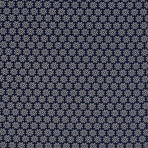 Gänseblümchen, dunkelblau