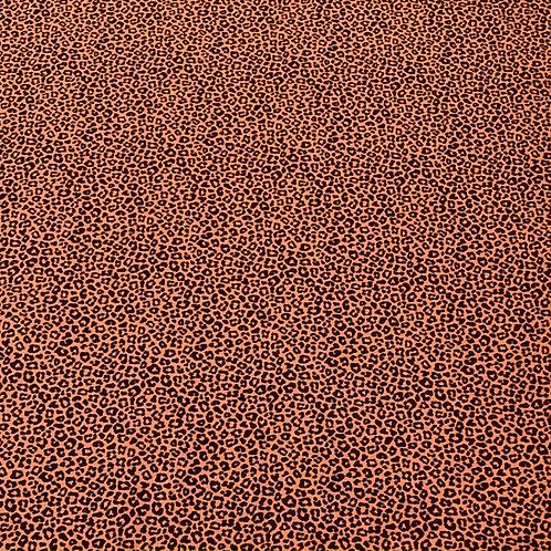 Leo, terracotta