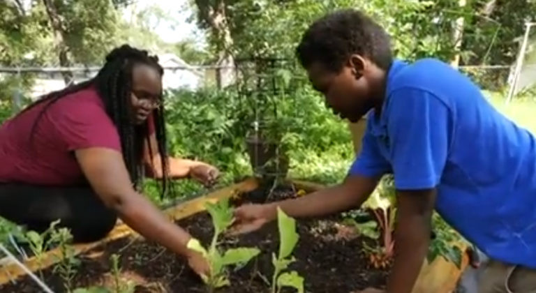 The Soul to Soul Gardening Program pairs African-American older adults with children to garden together each week.
