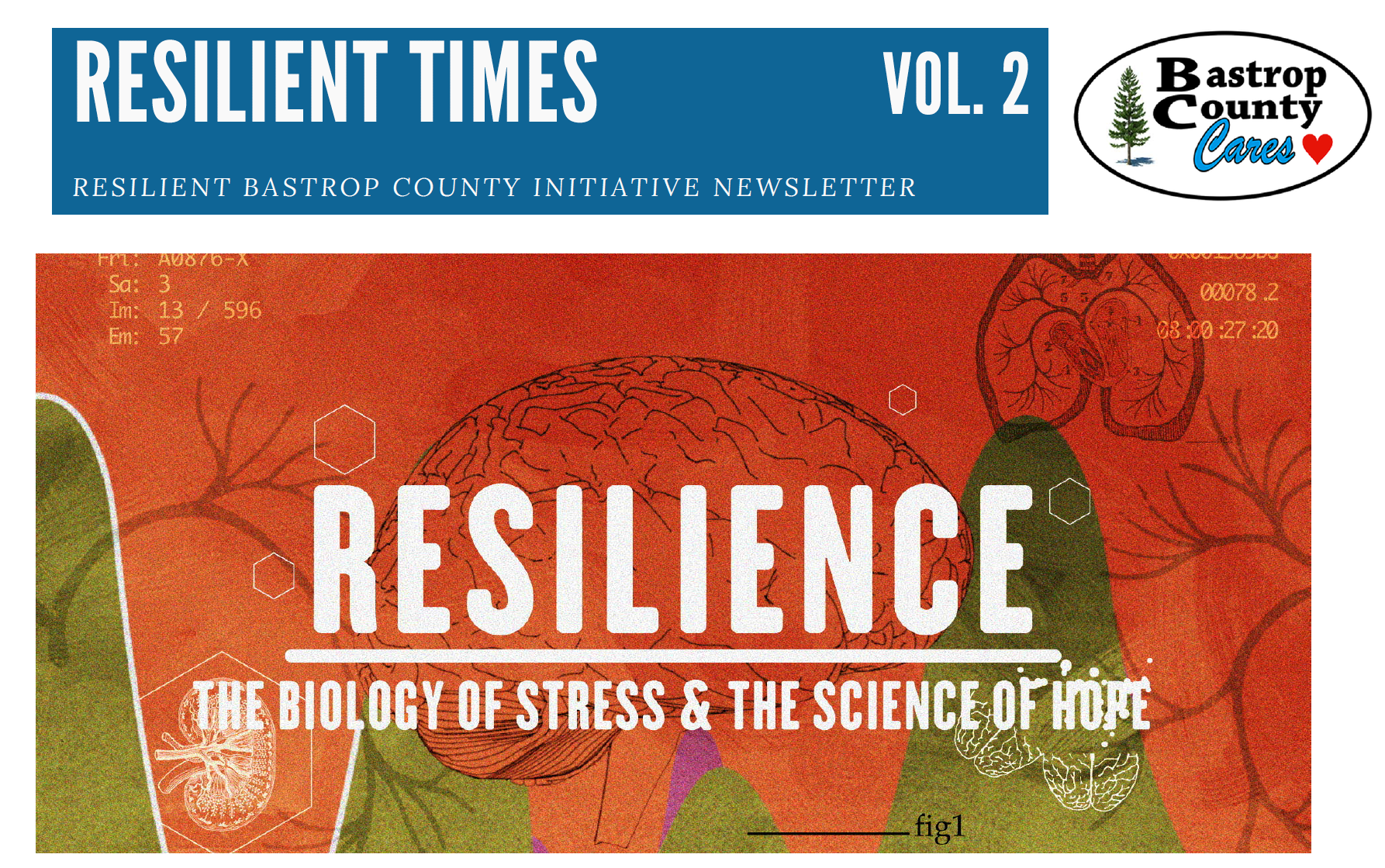 Resilient Times vol 2