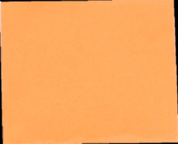 oranje.png