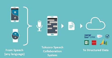 Consulting: Tukoro