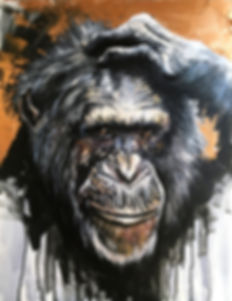 Monkey_edited.jpg