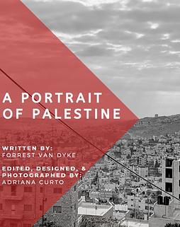 portrait of palestine.png