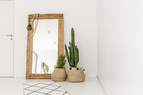 Enormous mirror accompanied by plants in