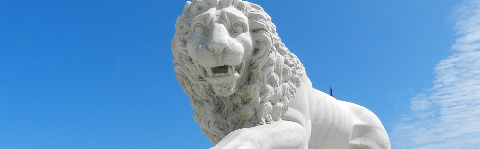 Lion - Bridge of Lions