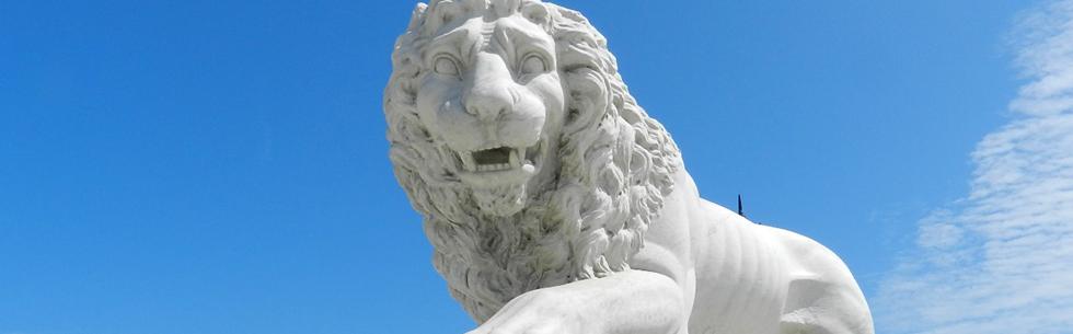 Lion - Bridge of Lions