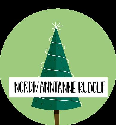 Nordmanntanne Rudolf ab 180cm