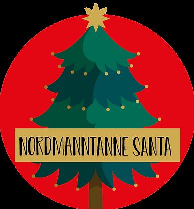 Nordmanntanne Santa ab 260cm