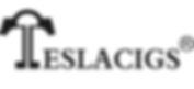 Teslacigs-logo.png