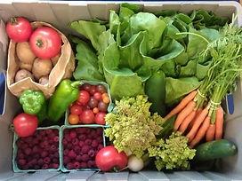 Strawberry Hill Farm July Box Example.jp