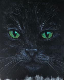 Black Cat 1 copy