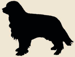 Original Logo pre-2004