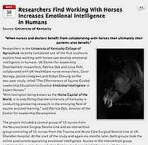 Horse Programs Brandon