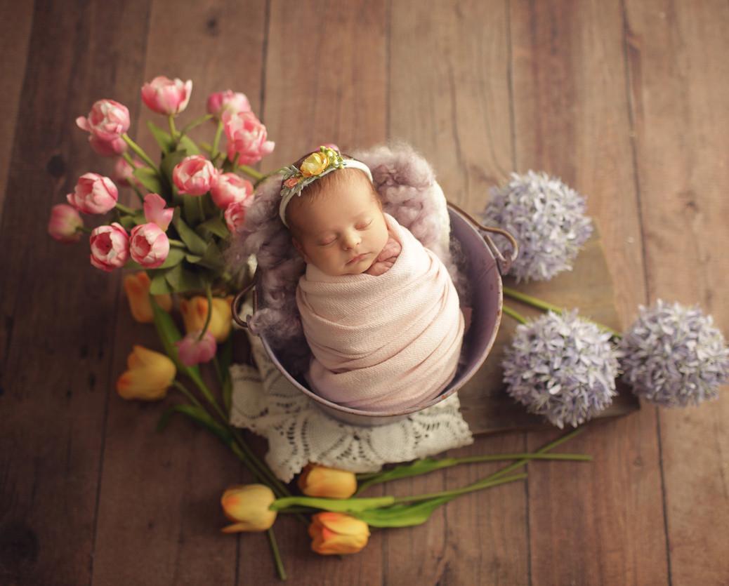 print eishes style newborn (53 of 107).j