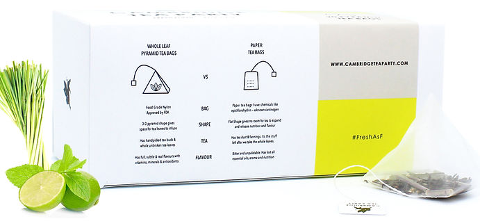 Pyramid Whole Leaf Tea Bags vs Paper Tea Bags
