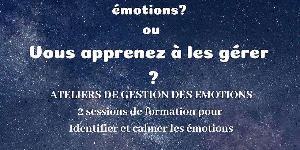 Atelier-Formation à la libération émotionnelle Niveau 1