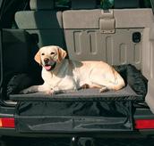 Cama para perros coche