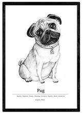 Nacnic Poster de Pug. Lámina Decorativa de Perros con Marco