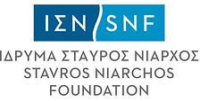 SNF logo.jpg