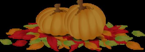 Holiday%20Pumpkins%20_edited.png