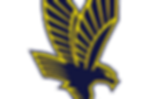 Eagles Landing High Logo.png