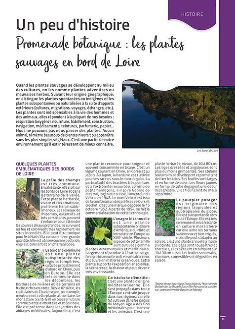 Extrait N°21 Promenade botanique_page-00