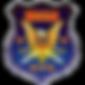 the ibssa logo