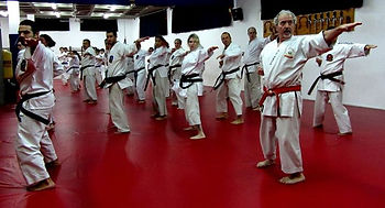 group of martial artists practise in dojo