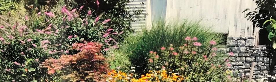 Landscape Design and Install