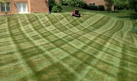Mowing and Full-Service Maintenance