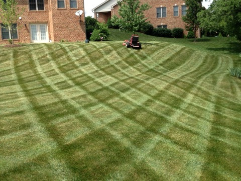 Mowing Stripes