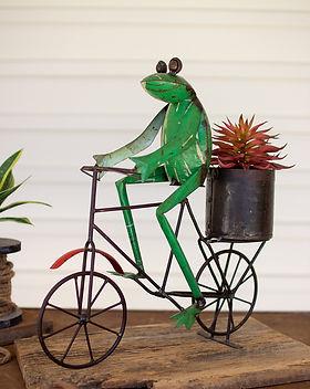 kalalou frog.jpg