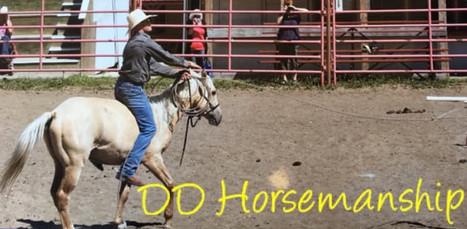 Denver Daines Horsemanship Workshop
