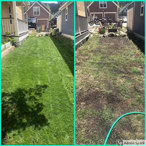 Compost for Lawn and Garden