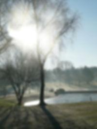 DSC01554 (1).jpg